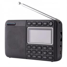 Powapacs DAB Radio P10